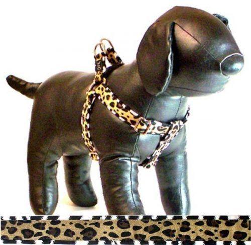 Cutie-Collar-Jungle Boogie-print-dog-harness