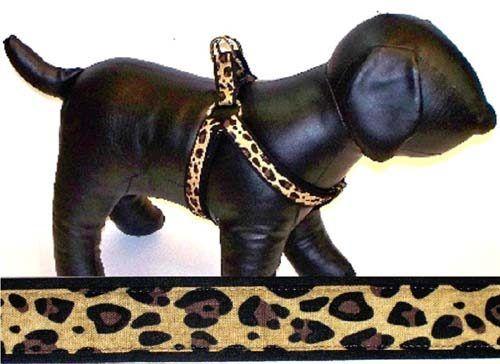 Cutie-Collar-Night-Leopard-print-dog-harness
