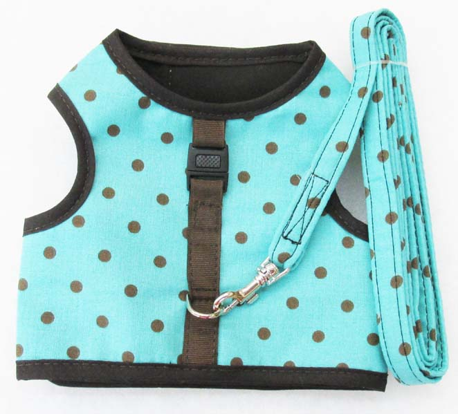 Harness-Turquoise-with-Brown-Dots-with-Matching-Leash.
