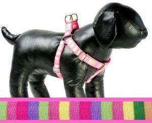 Cotton Candy fabric dog harness Cutie Collars