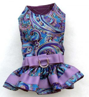 Harness dog Dress-Purple-Paisley.