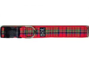 Cutie-Collar-Royal Tartan Plaid Dog Collar