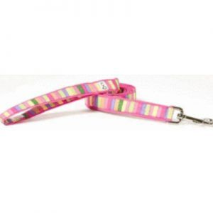 cotton_candy fabric dog leash lead Cutie Collars