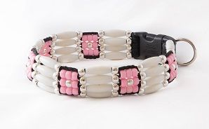 zany-zak-beaded-dog-collar