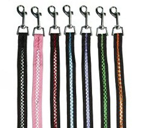 group-netted-leash-dog-leads