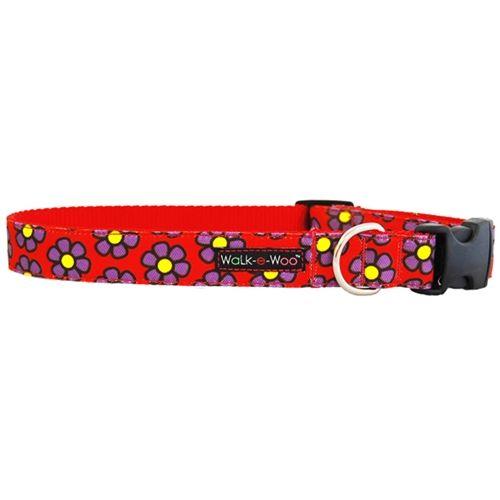 purple-daisies-red collar