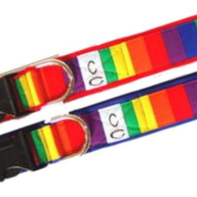 rainbow-fabric dog-collars