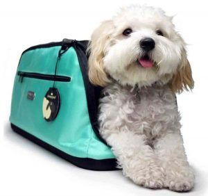 sleepypod teal Air Carrier Travel dog carrier
