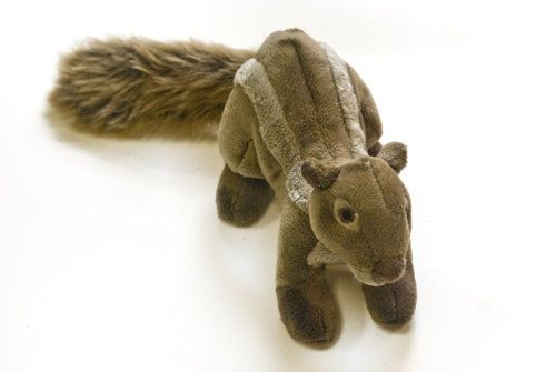 tuff-peanut-chipmunk toy