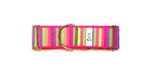 cutie-collar-cotton-candy-dog collar