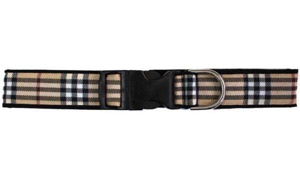 buckingham-tan-plaid collar