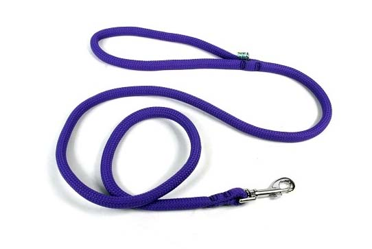 Yellow Dog Purple Lead Leash