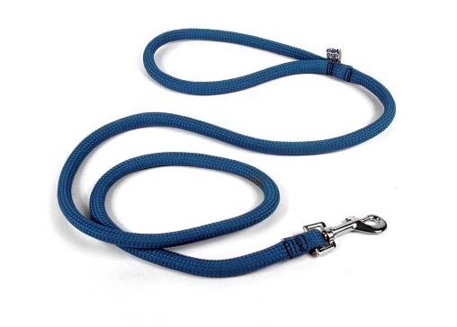 Yellow Dog Blue Lead Leash