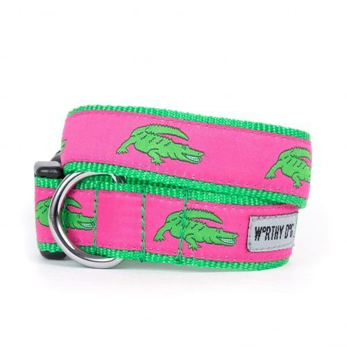 Worthy Dog Alligators Dog Collar