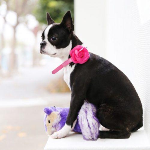 Purple chipmunk dog toy
