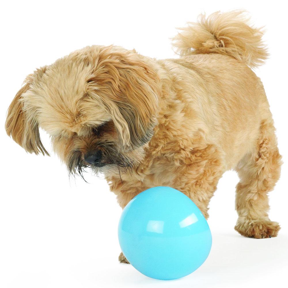 snoop dog orbee tuff dog toy